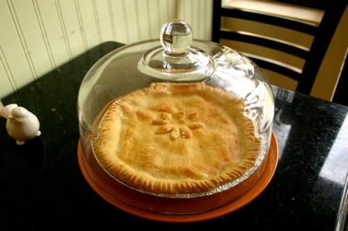 Shaker Lemon Pie at Petaluma Pie Company