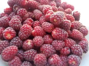 loganberries make a fine pie