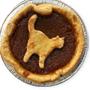 pumpkin pie at petaluma pie company,sonoma county, northern california
