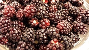Boysenberries have notes of plum and wine.